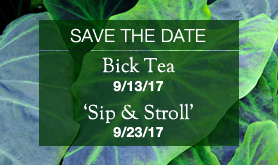 Save-the-Date: Bick Tea & 'Sip and Stroll'